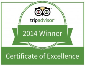 Certificate of Excellence Gill Dawg Trip Advisor 2