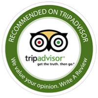 Gill Dawg Reviews Trip Advisor Port Richey Florida