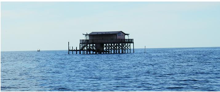 Gill Dawg Marina Stilthouse Stilt House Pasco County Port Richey
